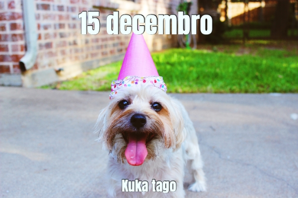 15 decembro... Kuka tago